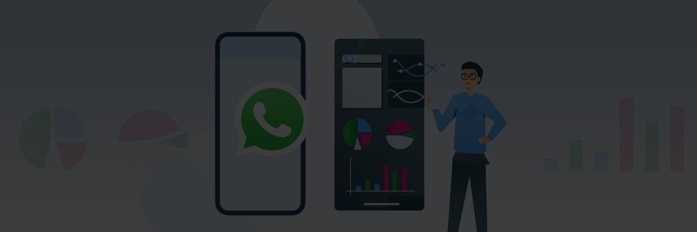 Whatsapp Statstics Infographic